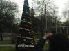 коледна елха за община Хисаря